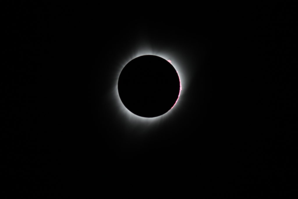 2017 Total Solar Eclipse - Prominences